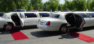 What do Wedding Limo Packages Offer?