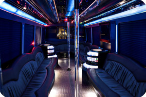 party limo bus rentals
